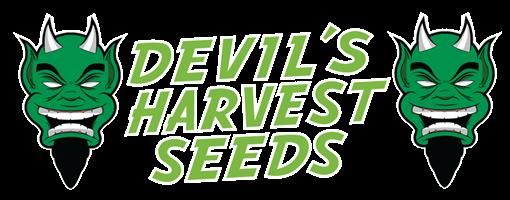 Devil's Harvest Seeds
